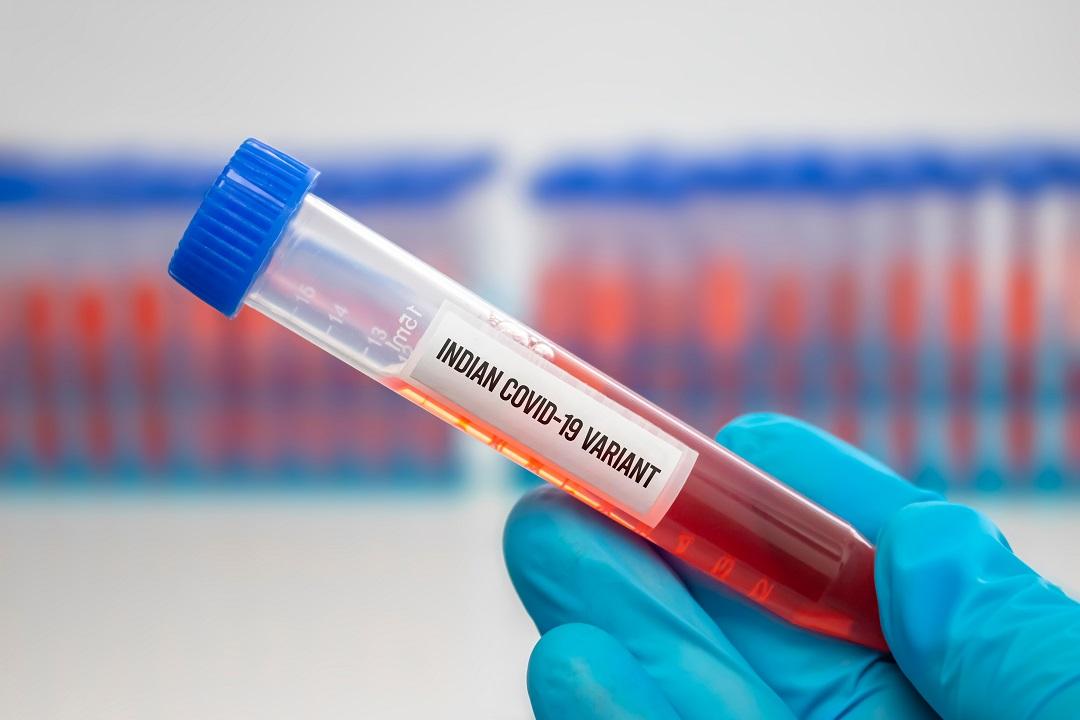 Coronavirus. Tre casi di variante indiana - o delta - nel Teramano